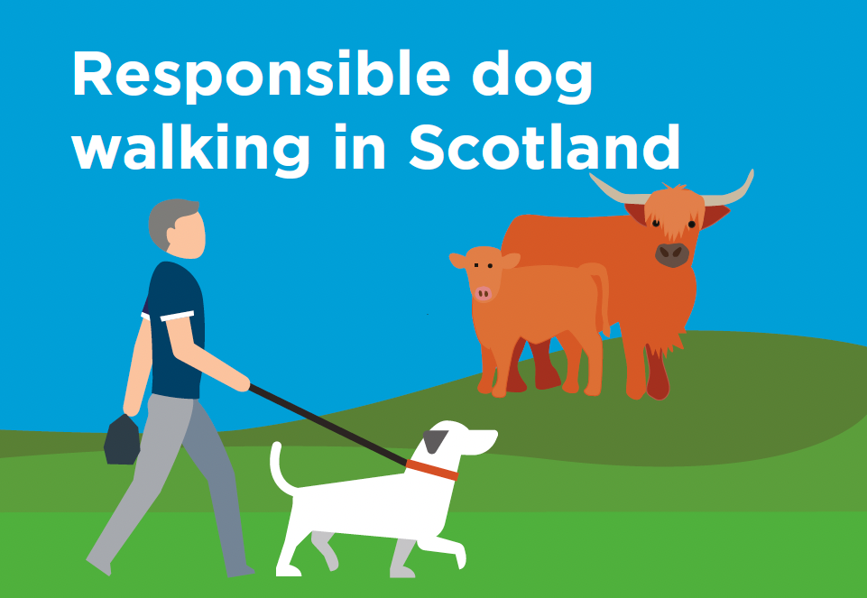 Cover of dog owners leaflet