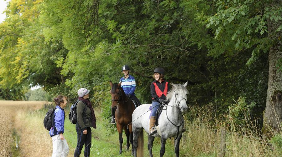 Horse riding   Scottish Outdoor Access Code