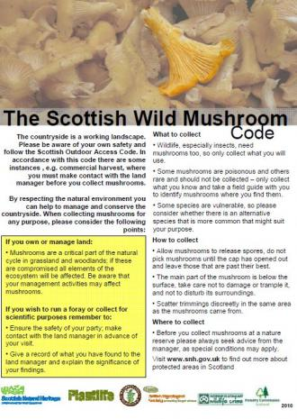 Scottish Wild Mushroom Code front cover