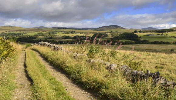 The Cateran Trail, near Kirkmichael, Strathardle. ©Lorne Gill/SNH. For information on reproduction rights contact the Scottish Natural Heritage Image Library on Tel. 01738 444177 or www.nature.scot