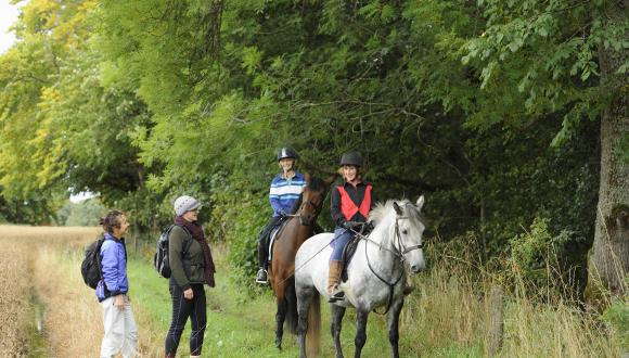 Multi user access path - Horse riders talking to people on foot along a path. ©Lorne Gill/SNH. For information on reproduction rights contact the Scottish Natural Heritage Image Library on Tel. 01738 444177 or www.nature.scot