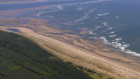 Aerial view of Tentsmuir NNR, Forth and Borders Area. ©Photo-Aerial Photography Solutions
